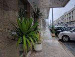 Hotel Dom Vilas. Entrada e parque privativo